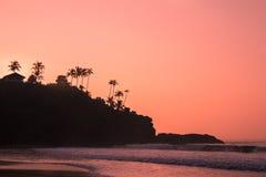 Sihouettes van palmen op de steenheuvel bij dageraad Royalty-vrije Stock Afbeeldingen