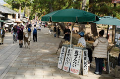 Sika deer feeding booth in Nara royalty free stock photos