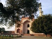 Sikandra dentro de los árboles Imagen de archivo