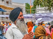 Sikh devotee at the Golden Temple Stock Photography