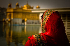 A Sikh devotee of The Golden Temple of Amritsar, Punjab, India Royalty Free Stock Image