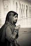 Sikh devotees of The Golden Temple of Amritsar, Punjab, India. A Sikh devotee of The Golden Temple of Amritsar, Punjab, India Stock Photo