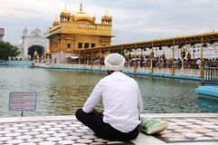 A Sikh guy praying in front of golden temple Royalty Free Stock Photos