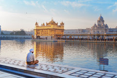 Sikh man is praying in Golden Temple. Amritsar. India Stock Photography