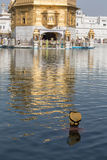 Sikh man visiting the Golden Temple in Amritsar, Punjab, India. Royalty Free Stock Photos