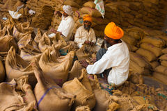 Sikh Men Packing Sacks Grain Charity Gurudwara Stock Photo