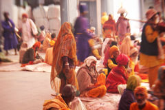 Sikh pilgrims in the Golden Temple Royalty Free Stock Photos