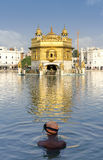 Sikh prayer in pond of Golden Temple in Amritsar, Punjab, India. The most prominent Sikh Gurdwara in the world Royalty Free Stock Image