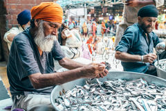 Sikh volonteer in Golden Temple frr canteen Royalty Free Stock Photography