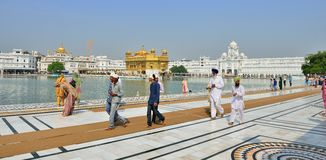 Sikh walking in the Golden Temple, Amritsar Royalty Free Stock Photo