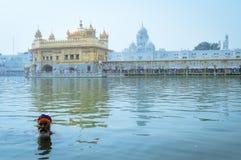 Sikhijska dewotka & x22; Nihang Warrior& x22; brać skąpanie w stawie przed Złotą świątynią fotografia royalty free