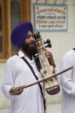 Sikhmusiker - Amritsar - Indien royaltyfri bild