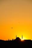 sikhouette μουσουλμανικών τεμεν στοκ εικόνα