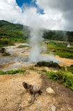 Sikidang Pool, hot thermal spring Royalty Free Stock Photo