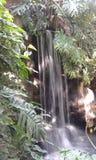 Siklawa Zdjęcie Royalty Free