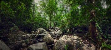 Siklawa Chan Ta w dżunglach Tajlandia Wtedy panorama Stockholm duża Głazy w lesie zdjęcia stock