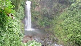 Siklawa, Costa Rica zbiory