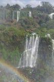 Siklawa Iguacu Obraz Royalty Free