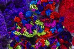 Siklawa lub kolory zdjęcia stock
