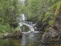 Siklawa Myantyukoski Paanajärvi park narodowy Zdjęcie Stock