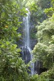 Siklawa na drodze Hana w Maui, Hawaje Fotografia Stock