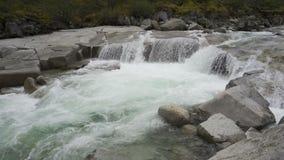 Siklawa na halnej rzece zbiory wideo