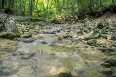 Siklawa na halnej rzece Crimea Zdjęcia Stock
