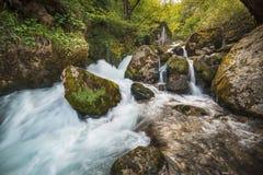 Siklawa na halnej rzece w lesie fotografia royalty free