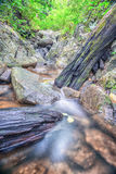 Siklawa na halnym skłonie w głębokim lesie Zdjęcie Royalty Free