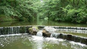 Siklawa na jeziorze w lasowych ampuła kamieniach i płycizna padamy w na wolnym powietrzu zbiory