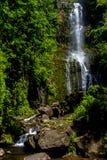 Siklawa na Maui Zdjęcia Stock
