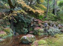Siklawa ogród podczas jesień kolorów obraz royalty free