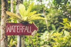 Siklawa podpisuje wewnątrz dżunglę Bali wyspa obrazy stock