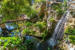 Siklawa przy Cedrowymi jezior drewnami, ogródami i Obraz Royalty Free