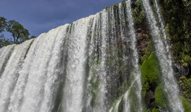 Siklawa przy Iguazu parkiem narodowym Zdjęcie Royalty Free