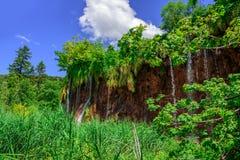 Siklawa przy latem jezior park narodowy plitvice siklawy Obrazy Stock