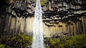 Siklawa Svartifoss w Iceland zbiory wideo
