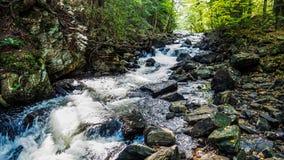 Siklawa W Algonquin prowincjonału parka Lasowym Wycieczkuje śladzie Fotografia Royalty Free