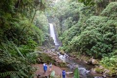 Siklawa w Costa Rica Obraz Stock