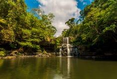Siklawa w dżungli Fotografia Stock