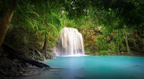 Siklawa w dżungla tropikalnym lesie deszczowym Zdjęcia Royalty Free
