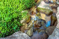 Siklawa w głębokim - zielona dżungla Koh Samui Zdjęcia Royalty Free