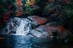 Siklawa w Jesień lesie zdjęcie stock