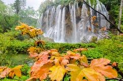 Siklawa w Jesień lesie Zdjęcia Stock