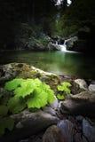 Siklawa w jeziorze Obraz Royalty Free