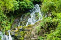 siklawa w Killarney parku narodowym Irlandia zdjęcia royalty free