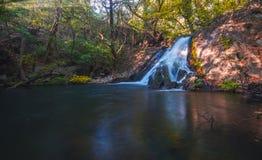Siklawa w lasowym Costa Rica Niektóre skały w wodzie zdjęcia royalty free