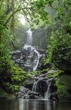 Siklawa w lesie obrazy royalty free
