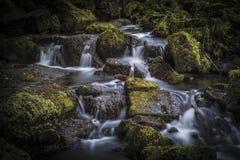 Siklawa w Lumsdale dolinie, Matlock, Derbyshire, Szczytowy Dist fotografia stock