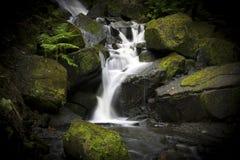 Siklawa w Lumsdale dolinie, Matlock, Derbyshire, Szczytowy Dist Zdjęcia Royalty Free